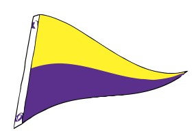 4' x 6' Yellow & Purple Nylon Pennant Flag
