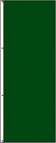 10' x 3' Solid Color Dartmouth Green Vertical Nylon Flag